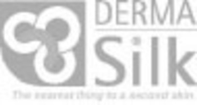 Grey logo 2 header