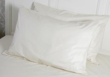 Natural pillow protector.225jpg header