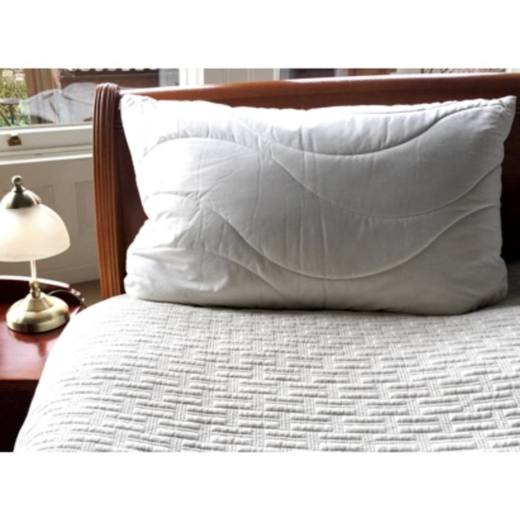 Anti-allergy Natural Wool Pillow