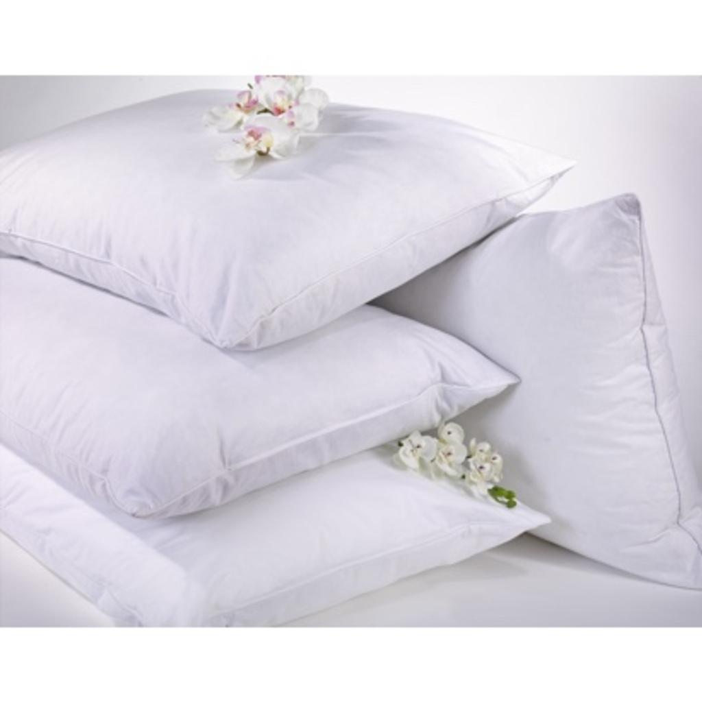 Anti-allergy Pillow with Healthguard®